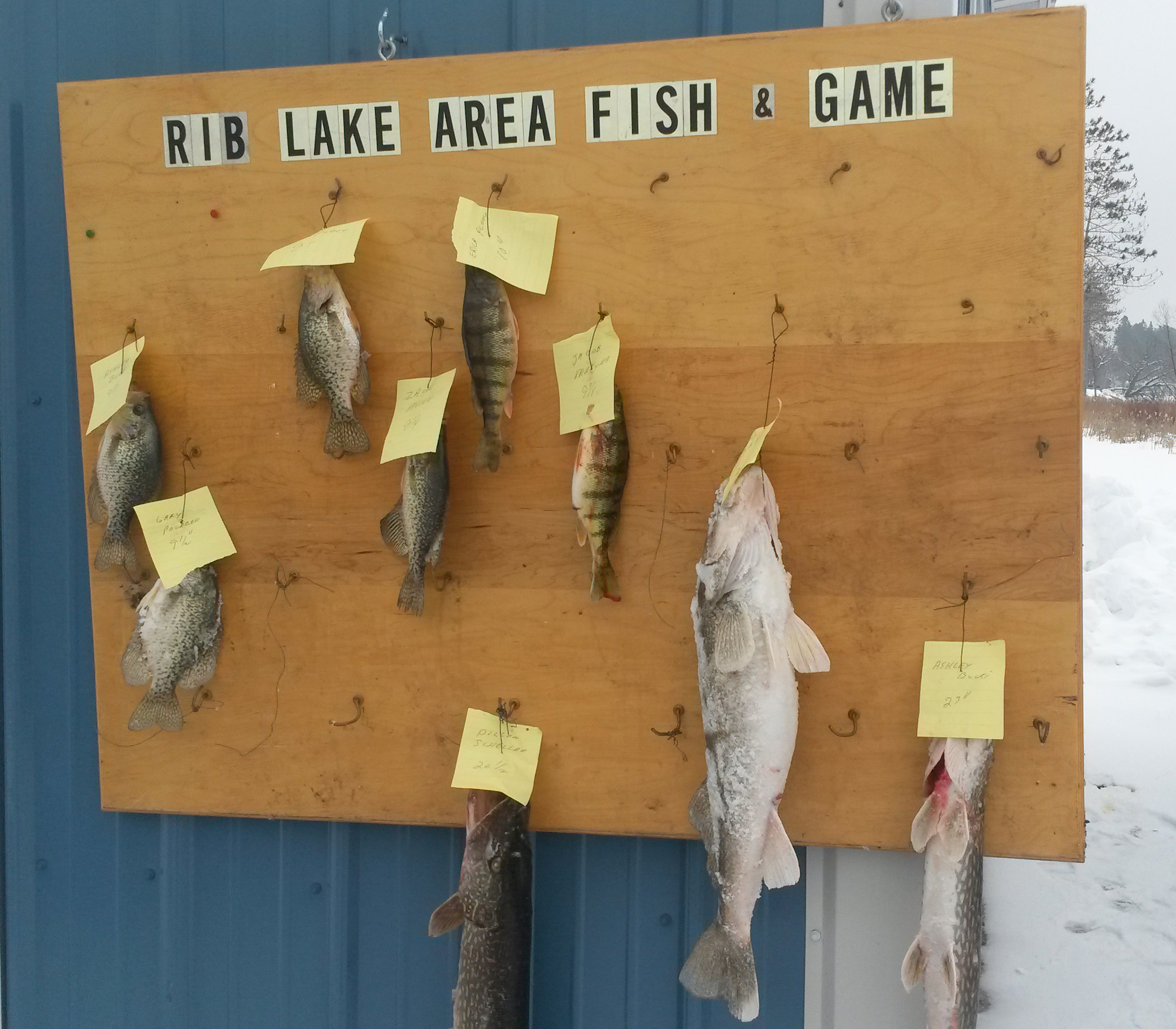 fish and game 021