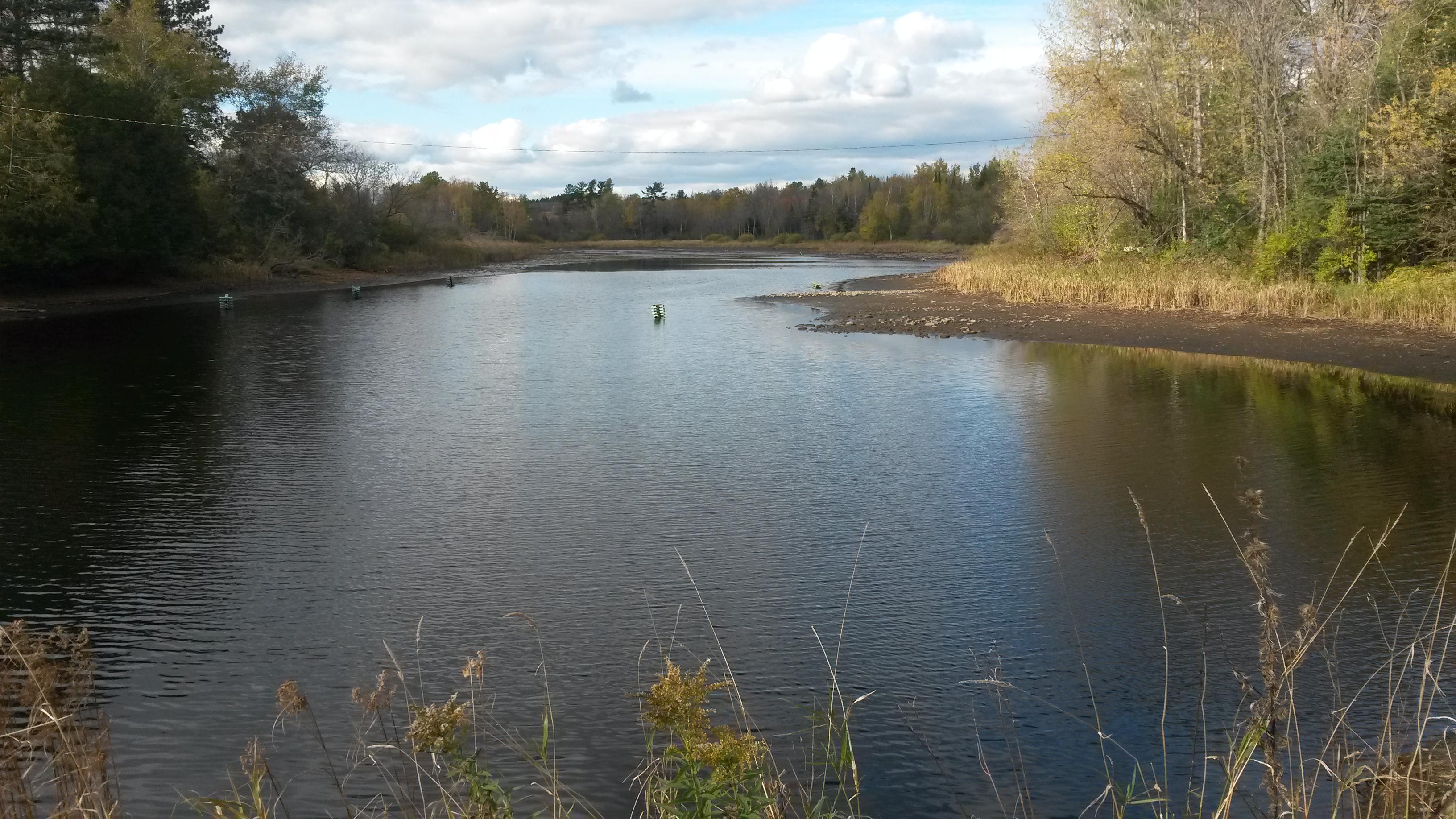 taylor county lake